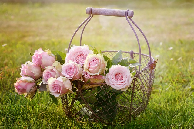 розата розово масло