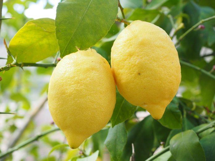 лимон и аспирин